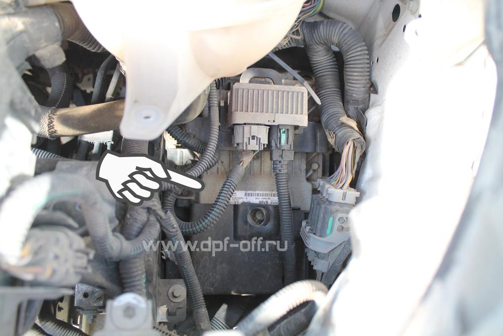 Удаление сажевого фильтра на Ford Transit new 2.2 tdci / Форд Транзин новый 2.2 дизель